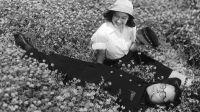 """Kurosawa, lado B"", un ciclo sobre el director japonés en la Sala Lugones"